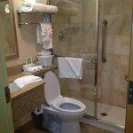 Small, clean, adequate bathroom