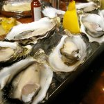 C's Steak and Seafood Restaurant - Fresh Australian Oysters