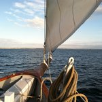 Bay Schooner Sail