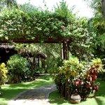 Cham Villas. Цветущие кустарниуи скрывают стены и ограждения