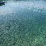 How clear the bay is at Kolocep
