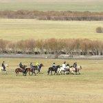A Tour Horseback Ride