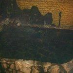 Bañera caliente Onsen