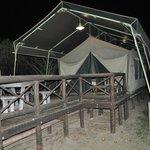 Our Safari tent no.33