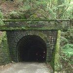『伊豆の踊子』になった気分の旧天城トンネル