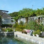 lovely gardens and pool