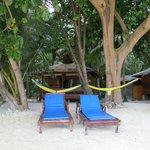 bungalow vu de la plage