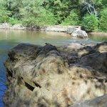 dam and rocks