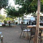 Essplatz im Freien unter Olivenbäumchen