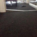 Carpet grip broken