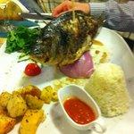Best fish ever