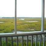 March View from Private Screened Porch