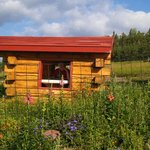 Kid's Garden Log Cabin