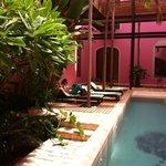 Courtyard Pool at Rosas & Xocolate
