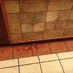 floor sausage
