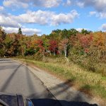 Pretty scenery on Crooked Rd