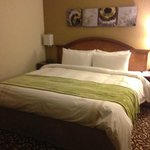 RM 833 King bed, large room, clean, comfy