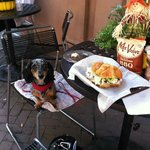 Outdoor pet friendly dining