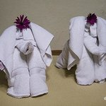 Cute Elephant Towels