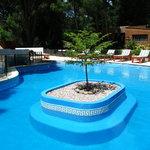 piscina exterior con solarium