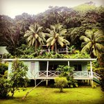View of the Cottage from the road with the Yoga Shala above!