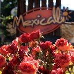 Mexicalli