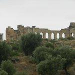 Roman Ruin, Volubilis, Meknes, Morocco