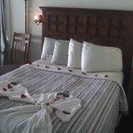 Regatta bed