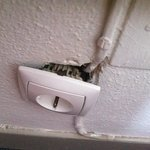 the plug that exploded beside my head!!!!