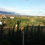 view of vineyard from Hotel Villa de Laguardia room