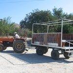 Tractor to Patara beach