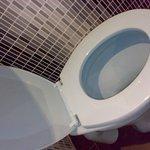 Toilet seat, literally