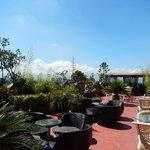 rooftop bar & garden