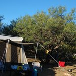 Our  camping area.