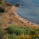 Foto de Cyprotel Kefalonia Garden Village