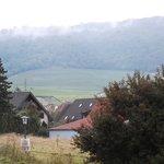 View toward vineyards