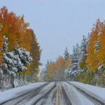 The drive into the campground areas- Oct 2013