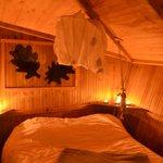 Cabane du chêne