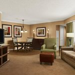Suite living areas