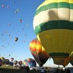 Has Anyone Seen My Balloon? Tours
