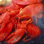 Hot...cooked Maine lobsters!!!  Take a boat trip for a lobster bake!
