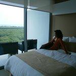 Vista de los manglares desde la habitación