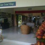 Teck Guan Cocoa Village & Cocoa Museum