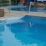 Grüner Algenrand im Schwimmbad