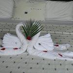 pliage de serviette