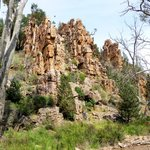 Warren Gorge sentinels