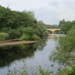 Thr walk along the river at Bellingham