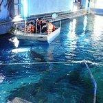 Glass bottom boat adventure