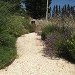Passage plein de charme dans le jardin provençal