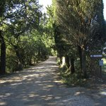 """The dirt """"white"""" road and entrance to the Villa"""